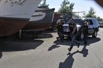 RussianCrossing_00604_D8.jpg