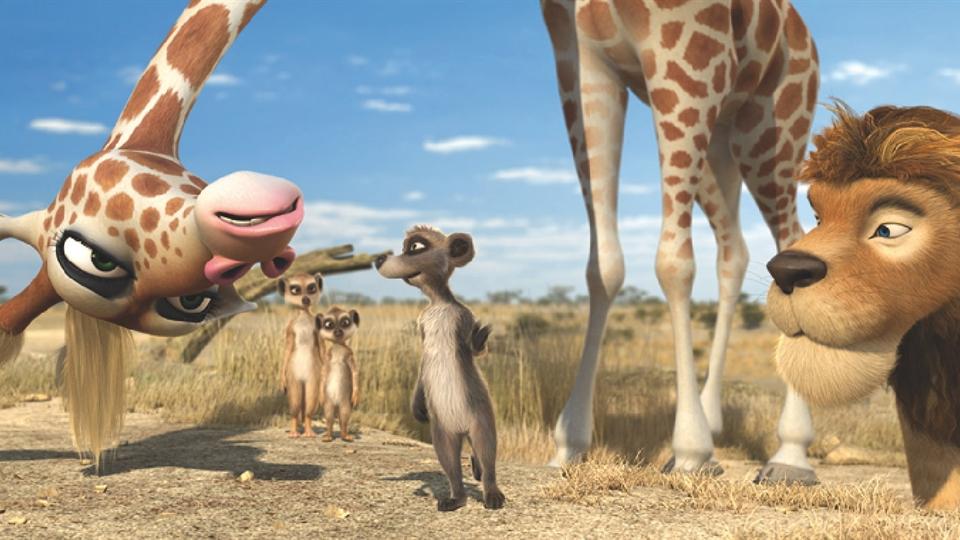 Safari (HD)